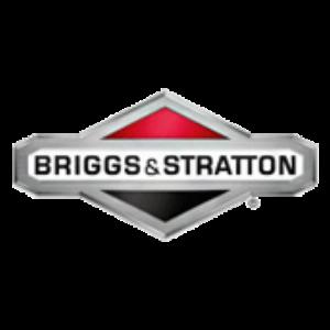 fleckl-landtechnik.at - Briggs Stratton Logo 300X300